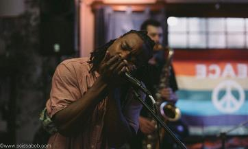 A man plays harmonica into a microphone while another man is in the background playing a saxophone. There is a rainbow flag behind them with a white peace sign.