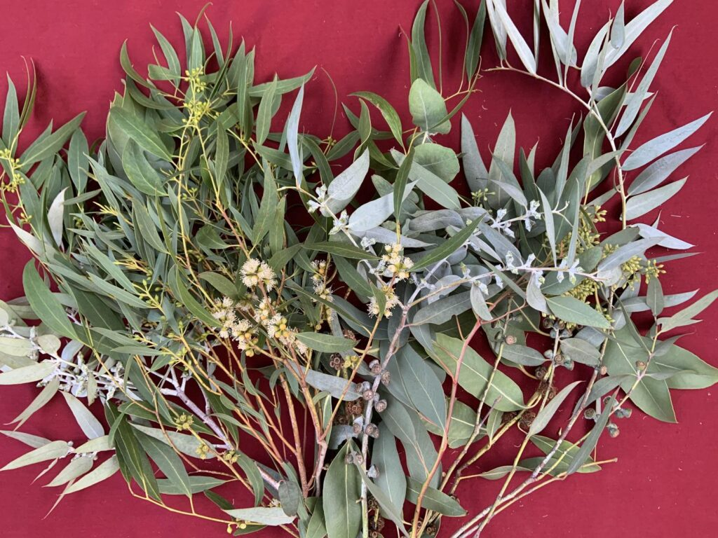 A bouquet of eucalyptus stems and branches laid out on a red cloth