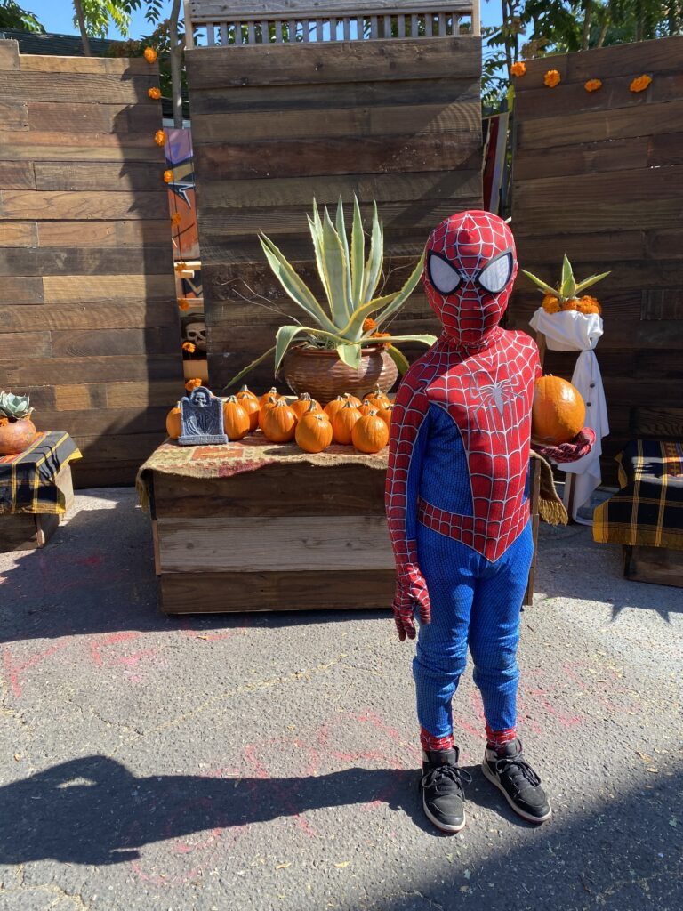 A young boy dressed as Spiderman holds a pumpkin and looks at the camera. Behind him is a platform with pumpkins, a blanket, and other decorations on it with a wooden wall behind it.